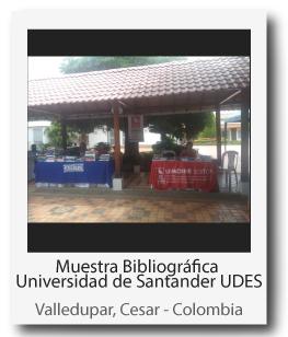 UDES-2.jpg